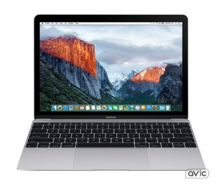Apple MacBook 12 Space Gray (Z0TY0000K)