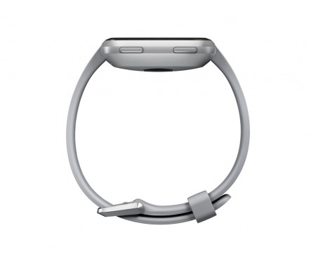 Смарт-часы Fitbit Versa, Gray/Silver Aluminum (FB505SRGY)