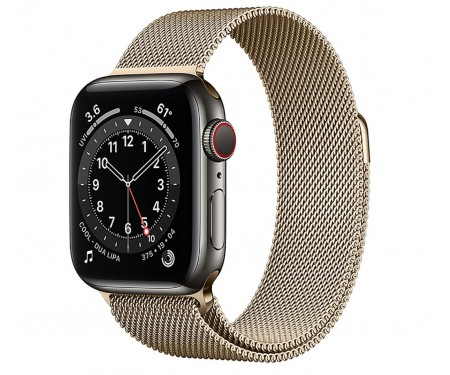 Apple Watch Series 6 GPS + Cellular, 40mm Graphite Stainless Steel Case with Gold Milanese Loop (M0DF3/M0DW3)