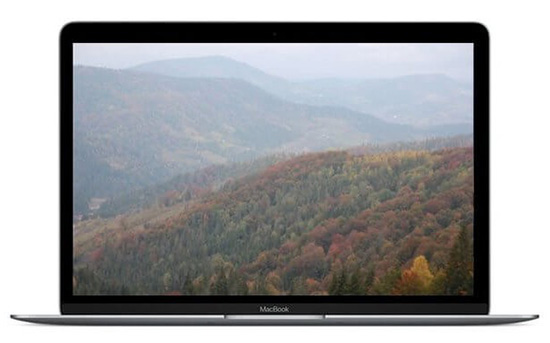 Ноутбук Apple MacBook 12 Space Gray (Z0TY0000K)